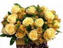 Chúc mừng sinh nhật Đồng chí Phạm Viết Hùng - TGĐ Công ty
